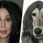 Los famosos con doble animal